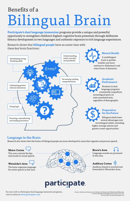 BilingualBrain_Infographic